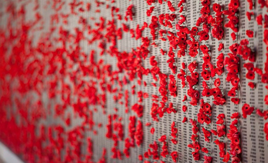 Wall of Poppies in Remembrance
